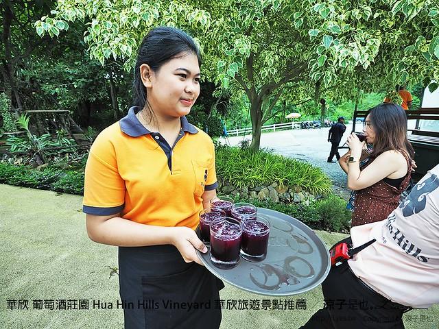 華欣 葡萄酒莊園 Hua Hin Hills Vineyard 華欣旅遊景點推薦 37