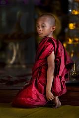 _MG_5809-le-18_04_2016_burmes-monk-in-wat-thail-wattanaram-maesot-thailande-christophe-cochez