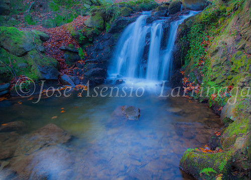 Parque Natural de Gorbeia #DePaseoConLarri #Flickr -2856