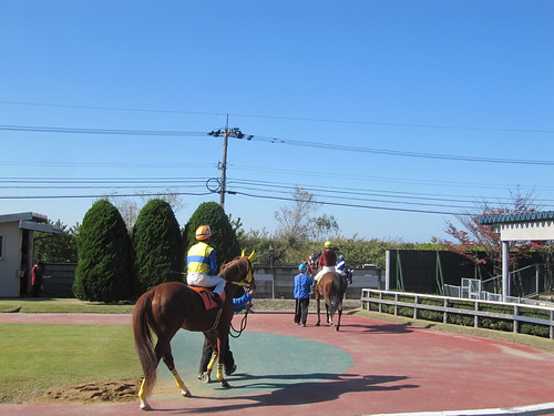 金沢競馬場のパドックから本馬場入場へ