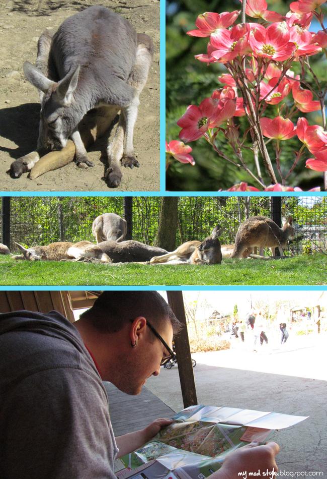 Columbus Zoo 3