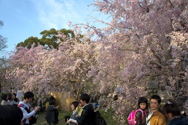 2012-kyushu-276