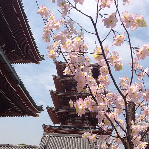 Pagoda #tokio #tokyo #japan #japon #pagoda