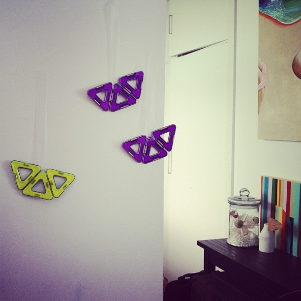 Look what I just came across. Some bats hanging on the wall by little Remi. Cool huh!