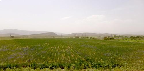 yazd-shiraz-L1030104