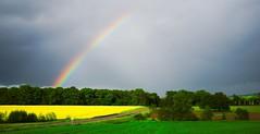 En mai, après la pluie, la pluie ! Avec de jolies couleurs ! (Choye)
