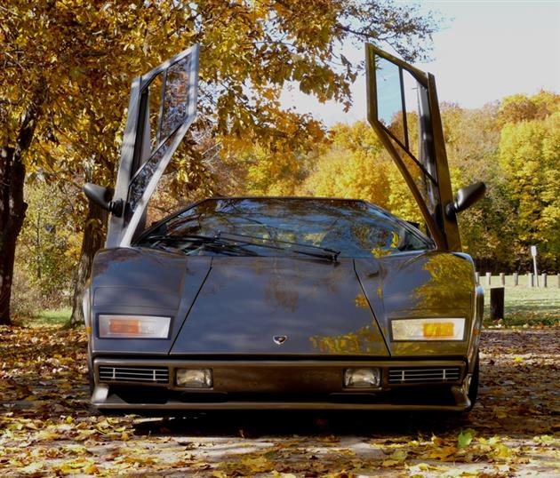Lamborghini-Countach-Built-In-Mans-Basement-13