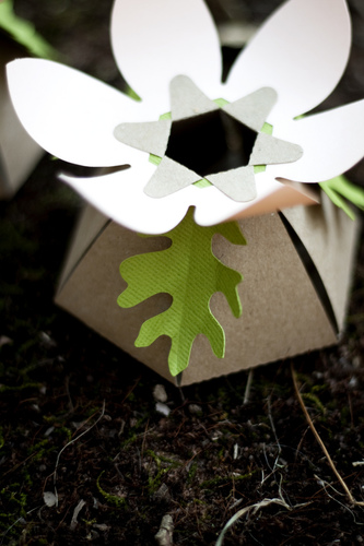 diy-daisy-favor-box