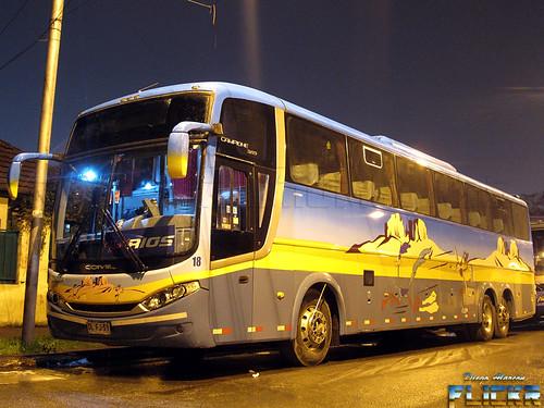 Buses Rios