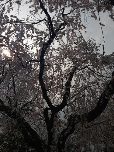 2013-03-31 at 14.33.39