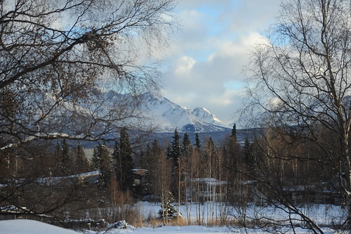 Lake Otis in the winter, Chugach Mountain Range as viewed between birch trees, snow, spruce, partly sunny day, Lake Otis neighborhood, Anchorage, Alaska, USA by Wonderlane