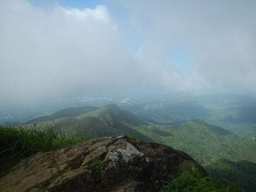 rainforest view puertorico bosque pico elyunque mountaintop