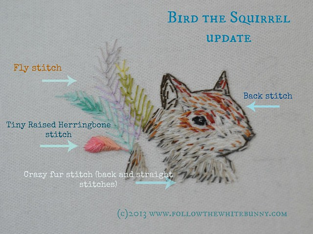 bird the squirrel update