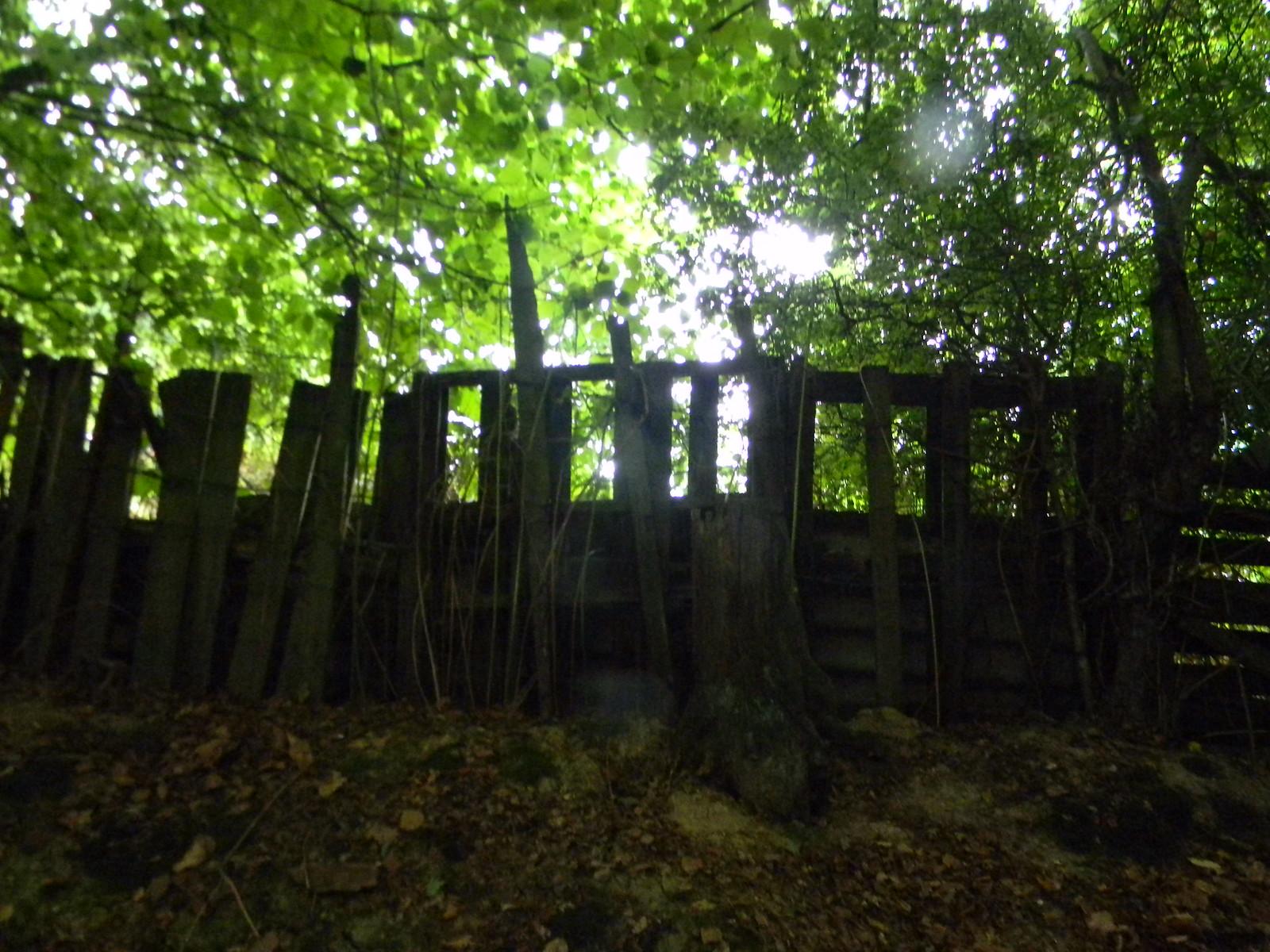 Ramshackle fence 3 Wadhurst Circular