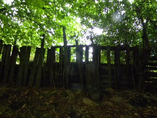Ramshackle fence 3