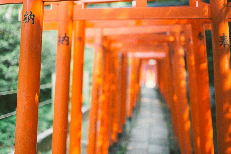 Nezu Shrine, Tokyo 2013