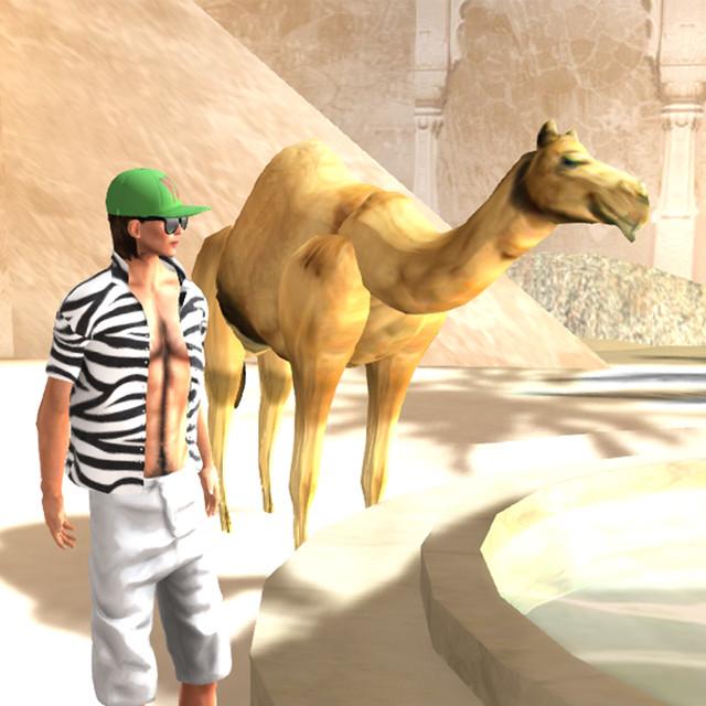 Bellydance Kingdom, Desert_001
