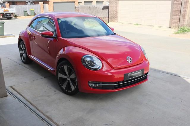 Beetle03