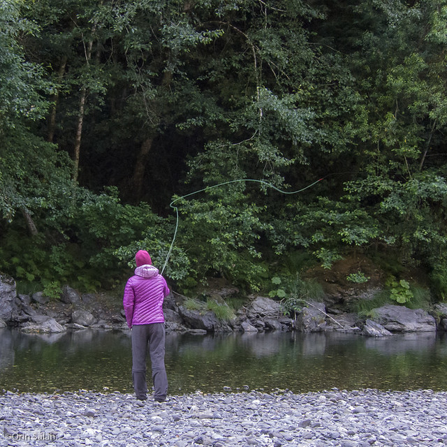 07Jul2013_redwoods-2670