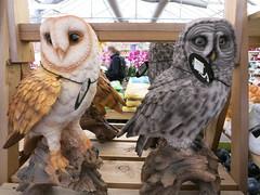 resin owls