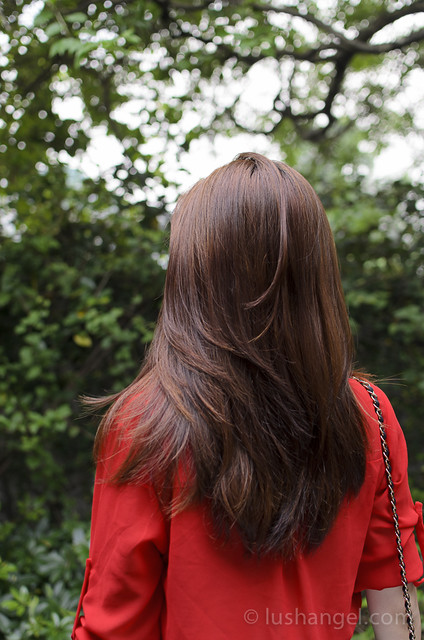 hairshaft-haircolor-review