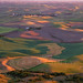 Palouse Colors Rule! by Ryan McGinty