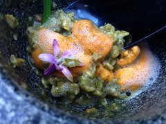 White Nettle Savory Oatmeal w Uni  at SPAGO, Bever…