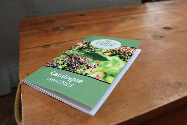Edible Garden 2015