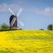 Kent Windmill by Bobrad