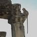 Angkor Wat Estatua viviente