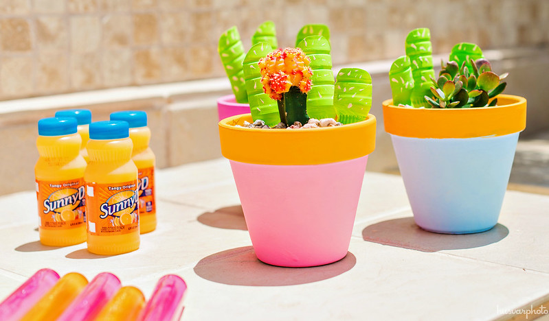 cactus garden craft for kids #WhereFunBegins