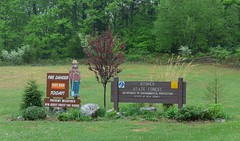 Stokes Forest State Park