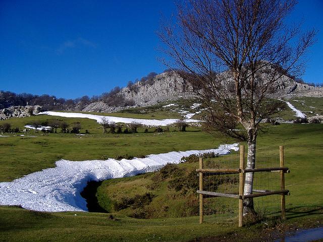 Otoño invernal en las campas de Arraba (1.066 m.)