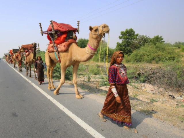 Nomadic life