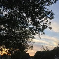 21 November 2016 #sunset #samespotforayear #vso #vsocam #nofilter