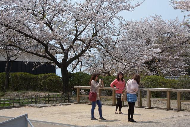 2012-kyushu-514