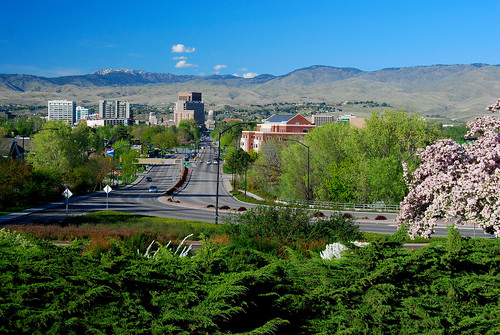 city trees urban mountains streets buildings landscapes spring day idaho boise clear capitol views blooms donwtown