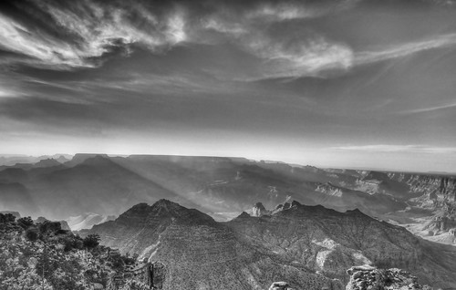Grand Canyon BW