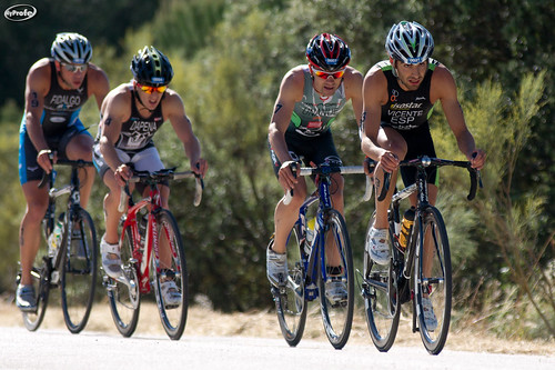 TRIATHLON WORLD SERIES