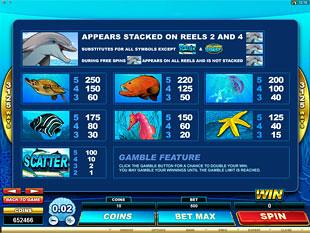 Dolphin Coast Slots Payout