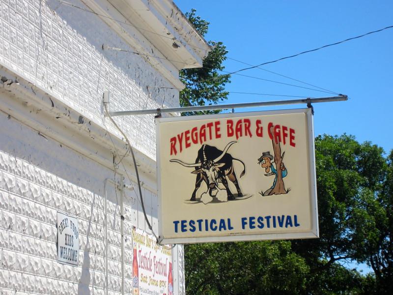 testical festival