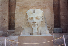 Ramesses II Head of Pharaoh