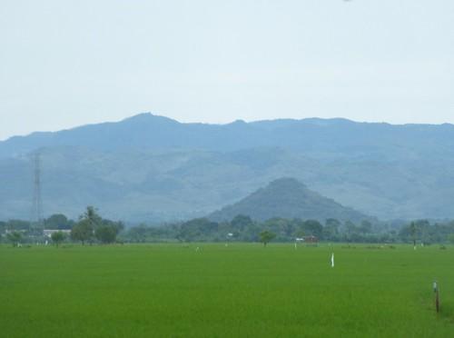 Sulawesi13-Sengkang-Pare Pare (40)