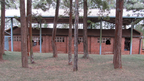 A Genocide memorial site outside Kigali. Ths was a former church. See the holes in the walls where grenades hit.