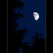 Waxing Gibbous Moon on August 15 2013 by Jim Crotty