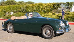 Jaguar '286 WIR' 2
