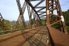 transport(0.0), skyway(0.0), amusement ride(0.0), park(0.0), roller coaster(0.0), amusement park(0.0), truss bridge(1.0), track(1.0), bridge(1.0),
