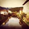 #bizkaia #orozko #rio #river #duck #patos #entremontañas #naturaleza #nature #natura #paisaje #landscape #basquecountry #paisvasco #phot #photographer #photograph #cannon