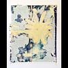Magnolia Polaroid image transfer. Type 690 film onto Moleskine watercolour paper.  Shot with a Polaroid Automatic 100 camera. #filmsnotdead #lovefilm