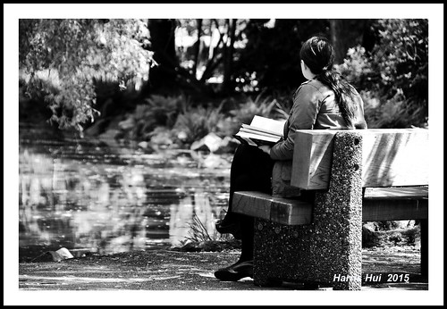 Reading With Distractions - Minoru Park N16958e